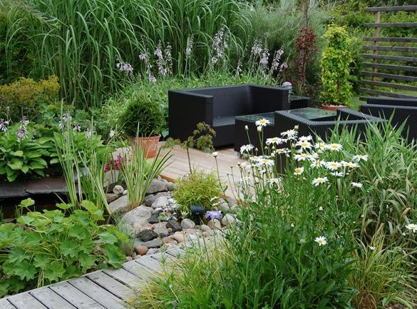 ogród 4